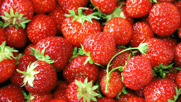 Image: This summer's strawberries will be the cream of the crop