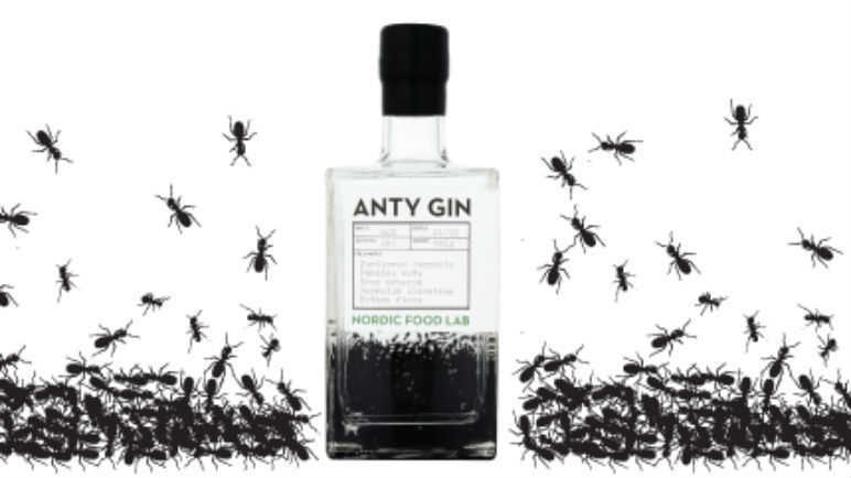 Image: Anty Gin: the drink du jour now comes with insects
