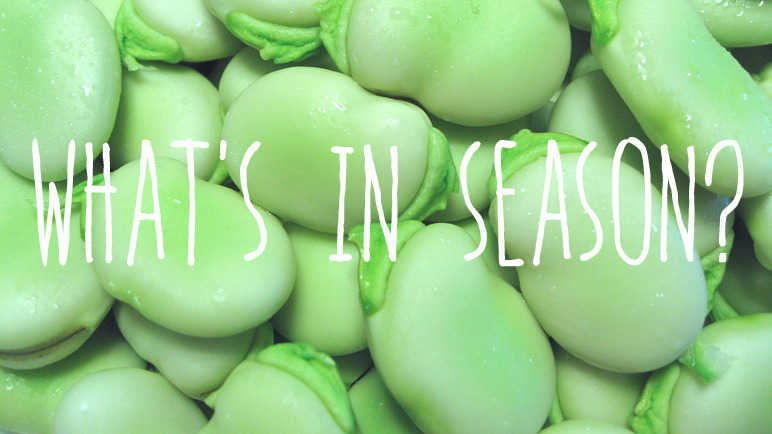 Image: What's in season? Broad beans