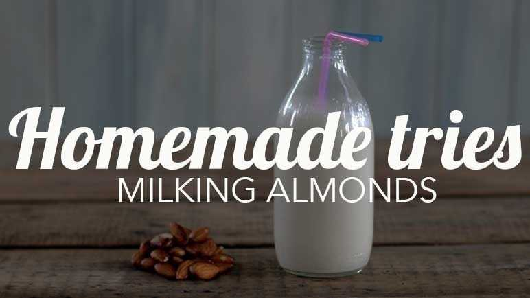 Image: Homemade Tries: almond milk