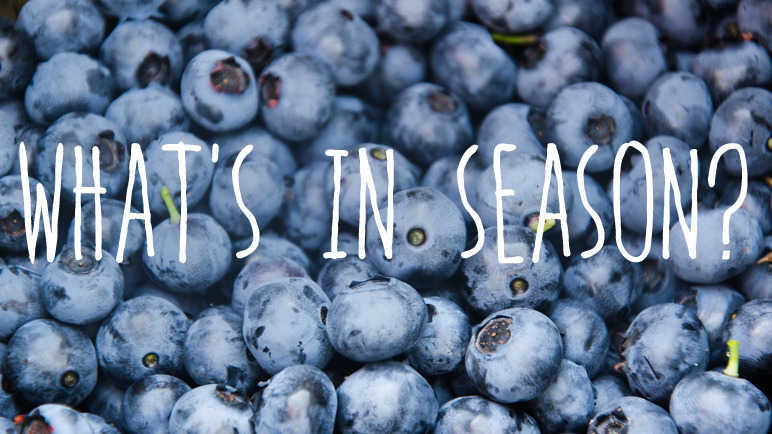Image: What's in season? Blueberries
