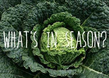 Image: What's in season? Savoy cabbage