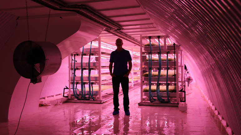 Image: We never expected this to happen: Underground farm opens in disused WWII bomb shelter in London
