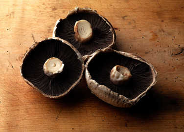 portobello-mushrooms-homemade