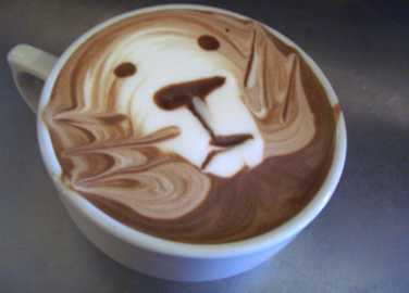 Image: Incredible frothy coffee art