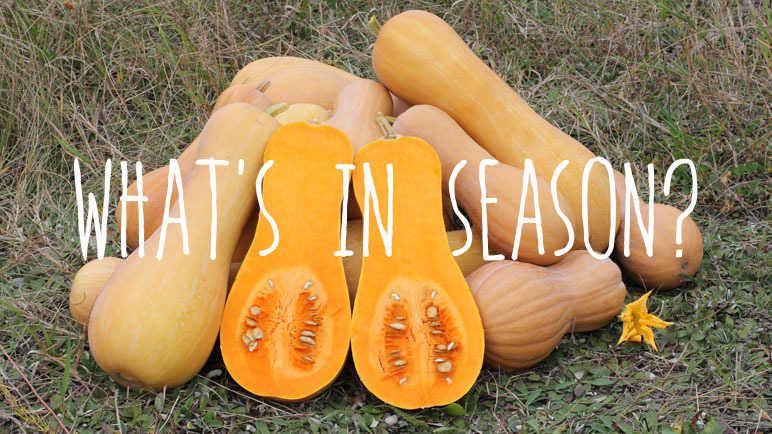 Image: What's in season