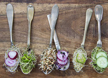 sprouts-on-spoons-homemade