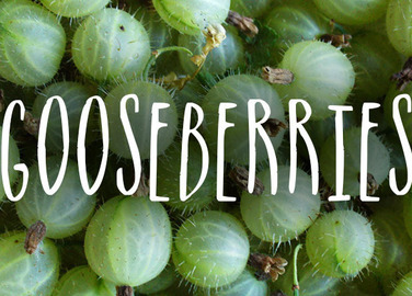 Image: 7 recipes for glorious gooseberries