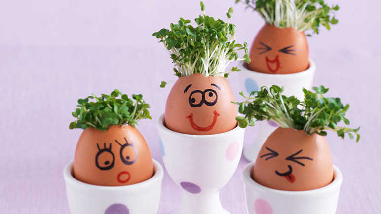 Image: How to make an egghead family