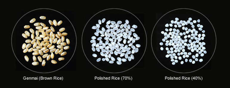 Rice polishing