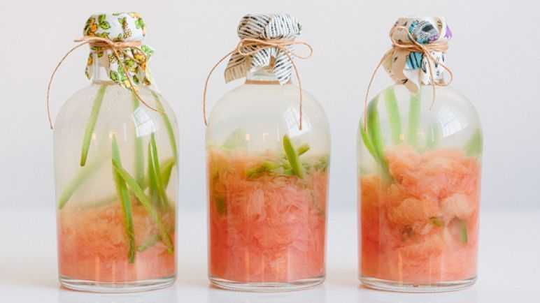 Grapefruit and jalepeno infused tequila
