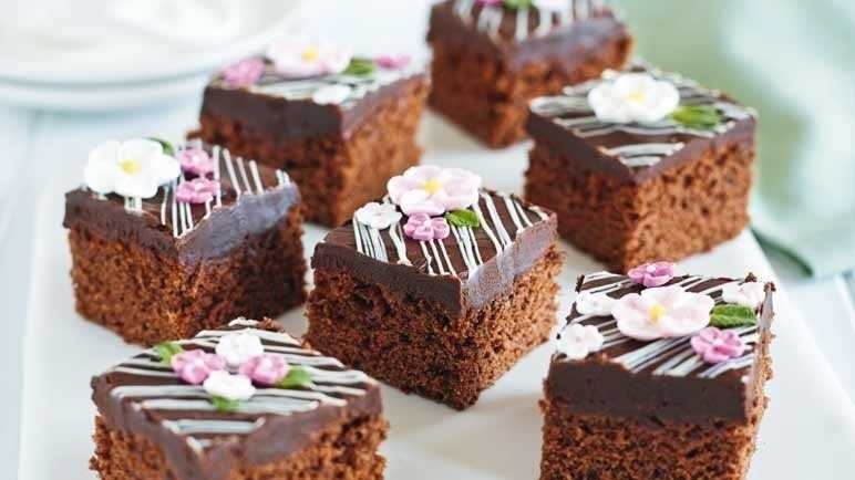 Fudgy chocolate squares