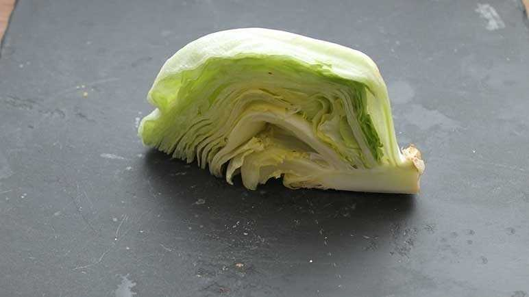 lettuce before