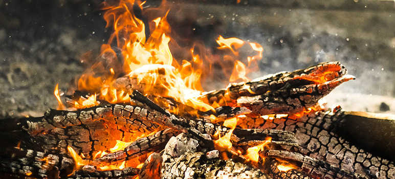 Logs of wood burning
