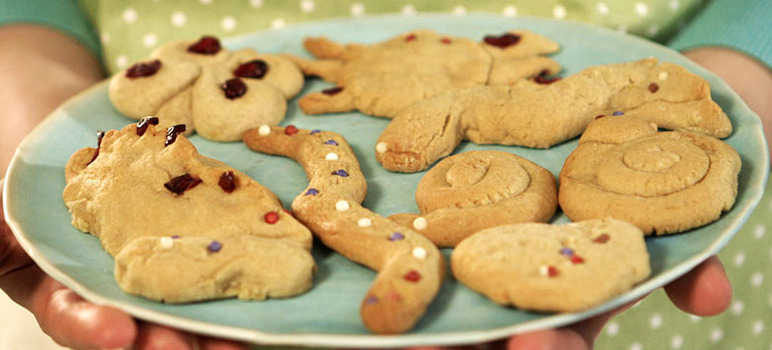 Lemony animal biscuits