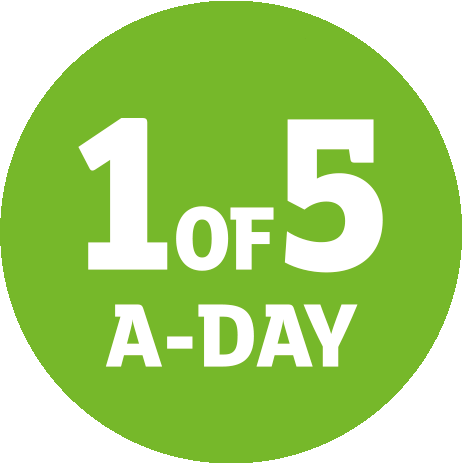 1 of 5 a day logo2