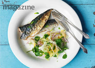 Roasted mackerel with fennel, red onion and apricot salad