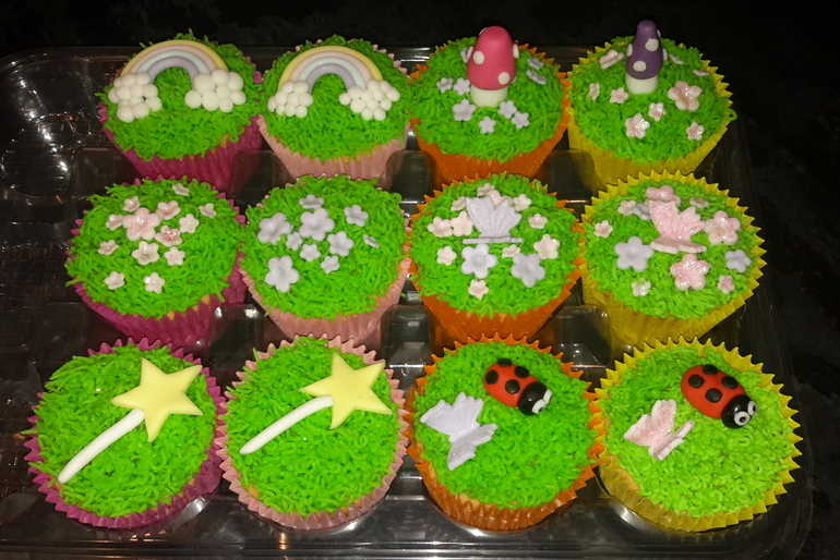 Fairyland Cupcakes  image