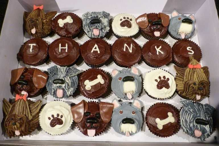 Doggy cupcakes - thank you for saving my dogs life. image