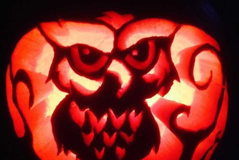 Spooky Owl ! image