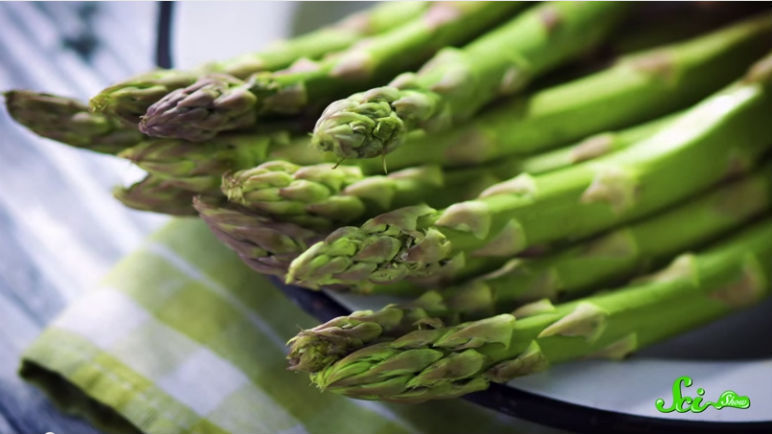 The Truth About Asparagus